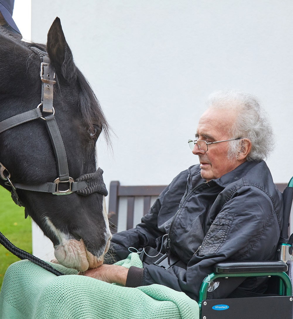 Wish comes true for Burton man as horse visits St Giles Hospice